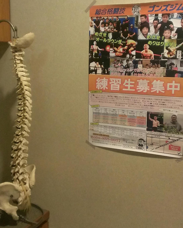 元町整体院と骨とポスター