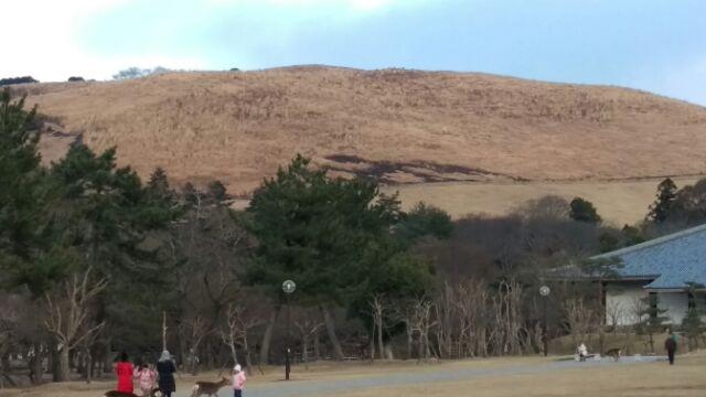 墓参りと地元奈良