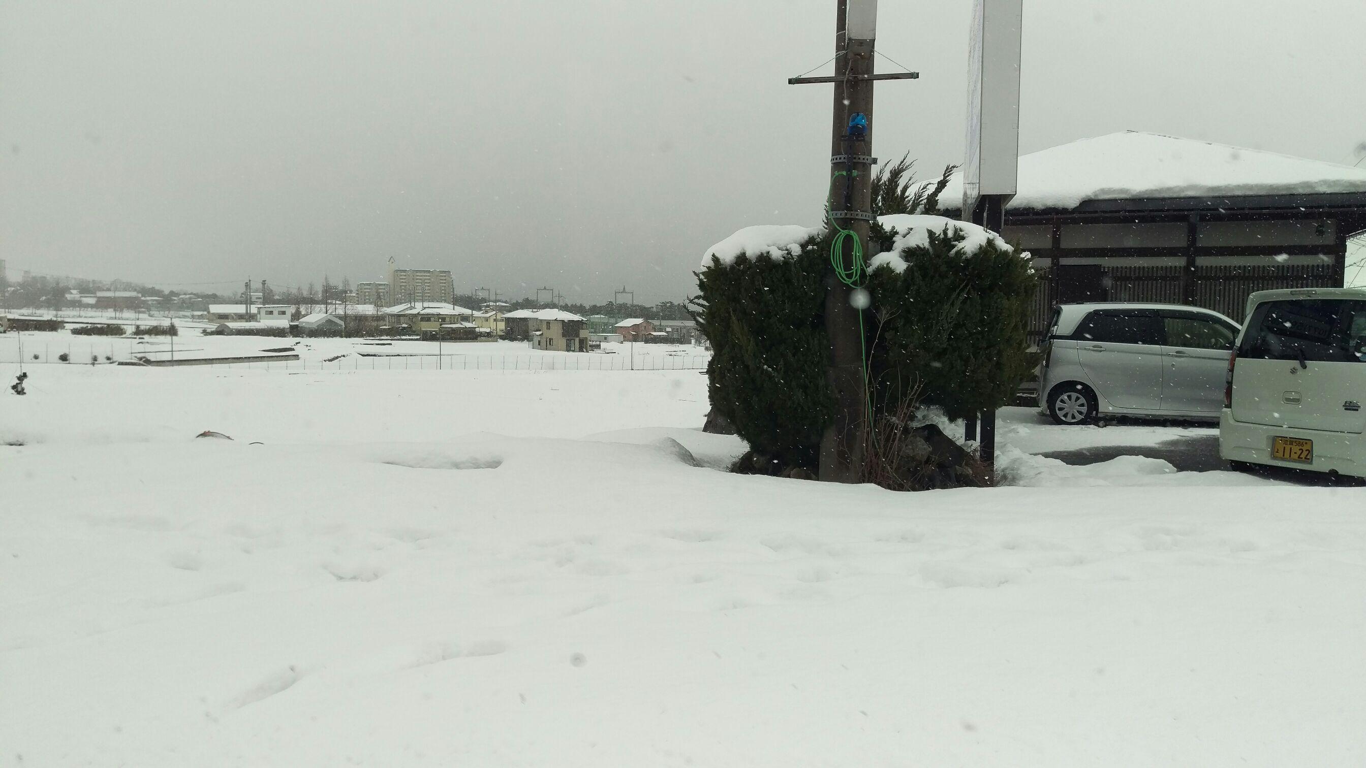雪と神社とあかん